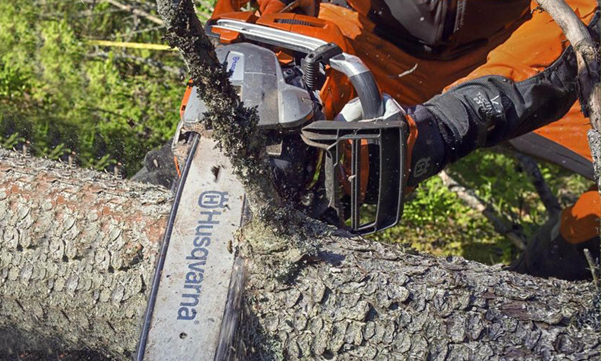 equipamento florestal